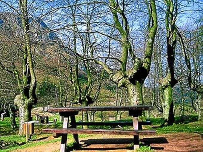 La Diputación recopila información de más de 200 áreas recreativas de Bizkaia