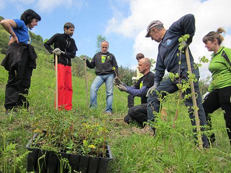 ¿Quieres colaborar en la restauración del bosque autóctono de Larruskain?